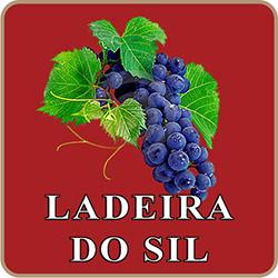 ladeira_sil_logo_250x250_px