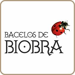 bacelos_biobra_logo_250x250_px