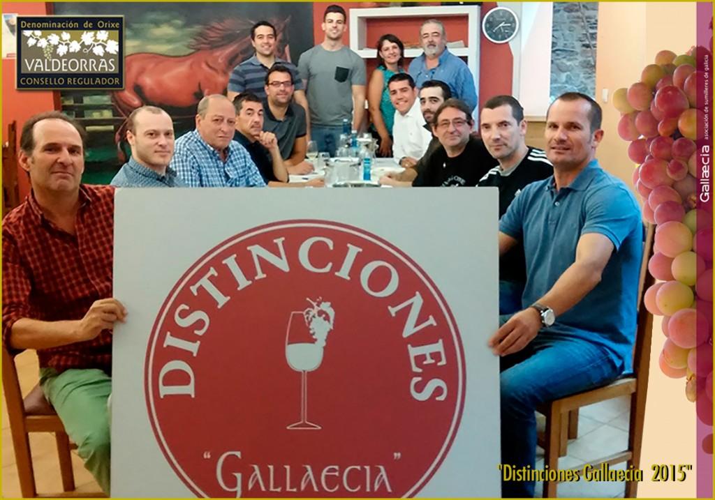 Distinciones-Gallaecia-2015